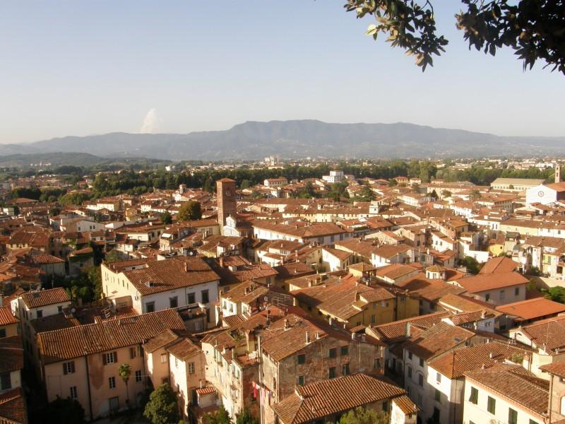 Motiv: Hustage i Lucca