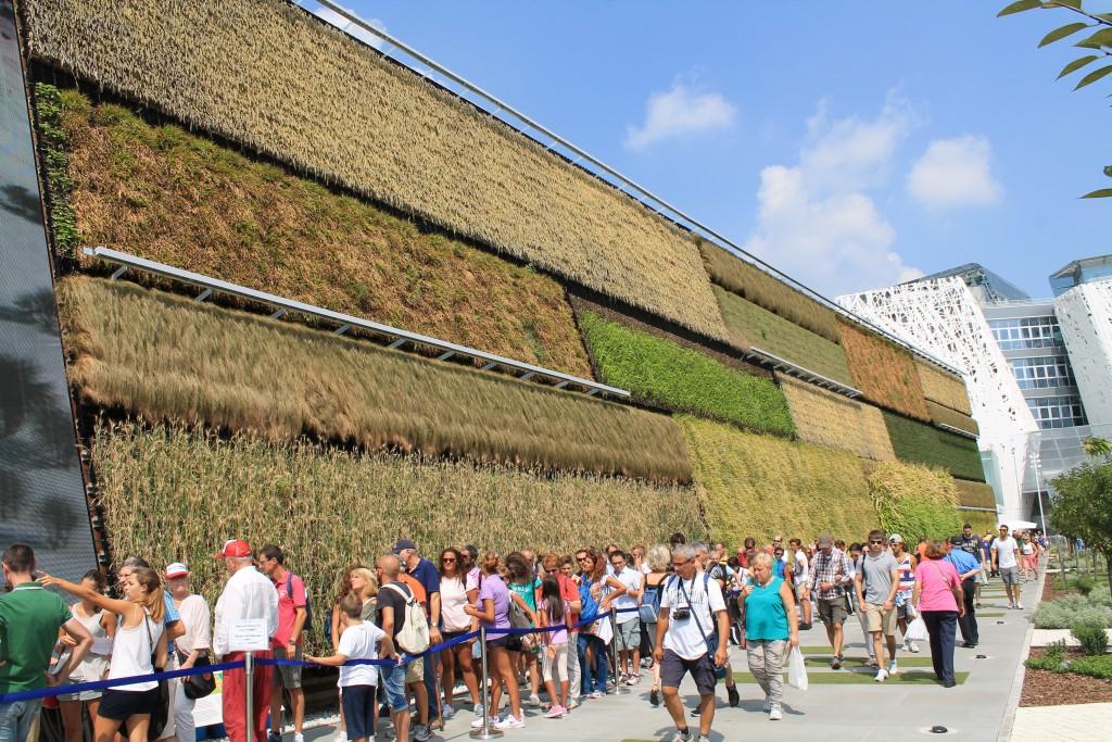 Israels pavillon plantevæg på EXPO 2015 i Milano