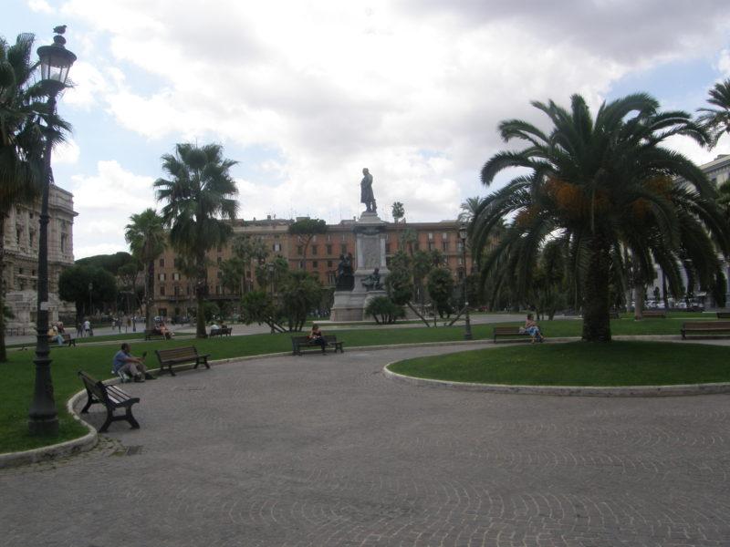 Herfra får man et godt indtryk af de mange palmer på pladsen